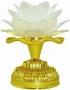 Flor de Lotus Mantras