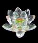 Flor de Lotus P