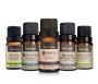 Oleo Essencial Via Aroma